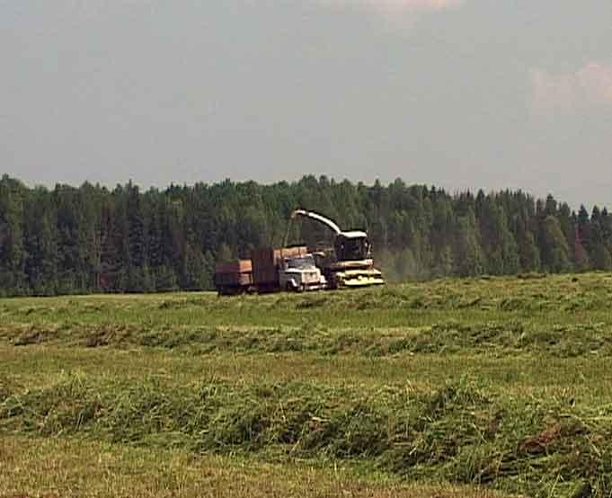 Кормозаготовительные работы в Кировской области