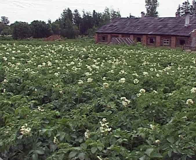 Фермеры к сельхозпереписи готовы