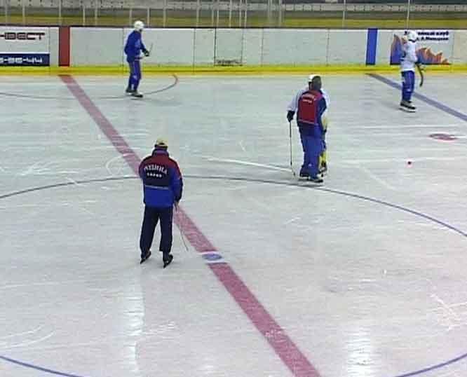 «Родина» не будет участвовать в Чемпионате России по мини-хоккею