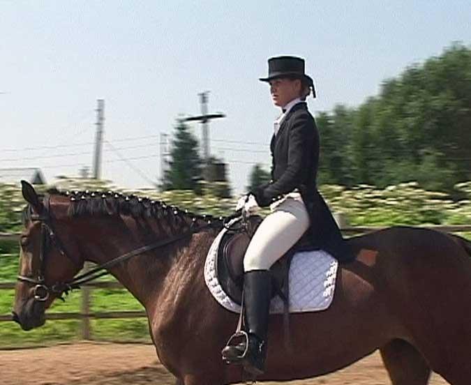 Возрождение конного спорта