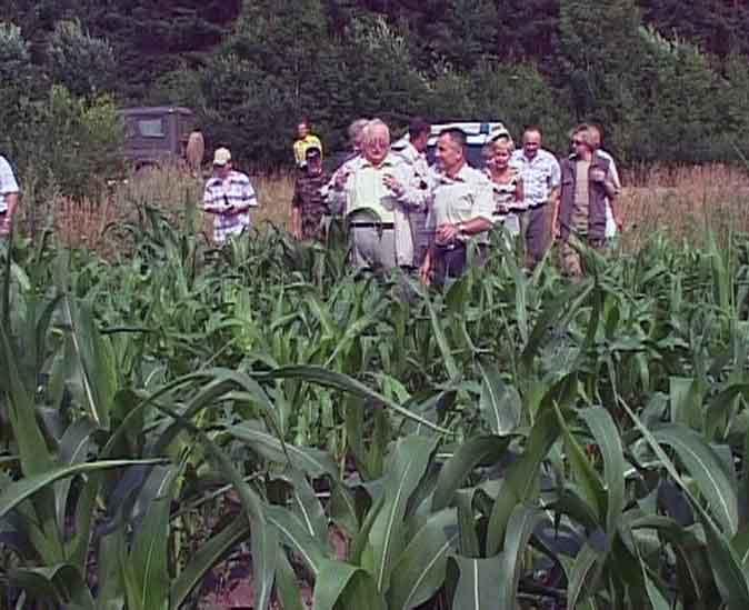 Колхоз «Путь Ленина»  - одно из самых успешных сельхозпредприятий области