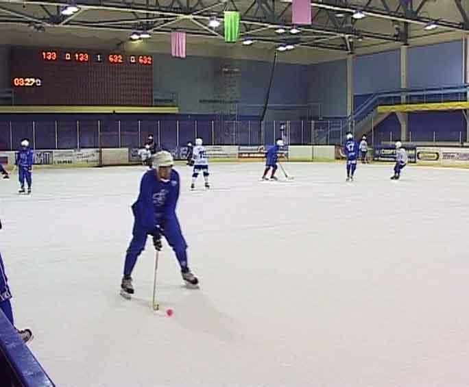 Кубковые матчи хоккейного клуба «Родина»