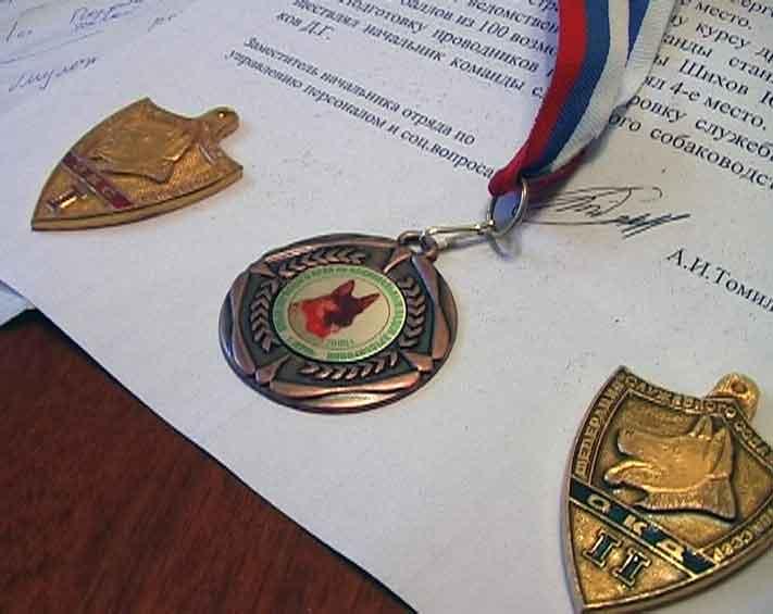 Кировчанин занял третье место на соревнованиях кинологов