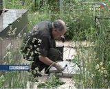 Почему горят венки на армянских могилах?