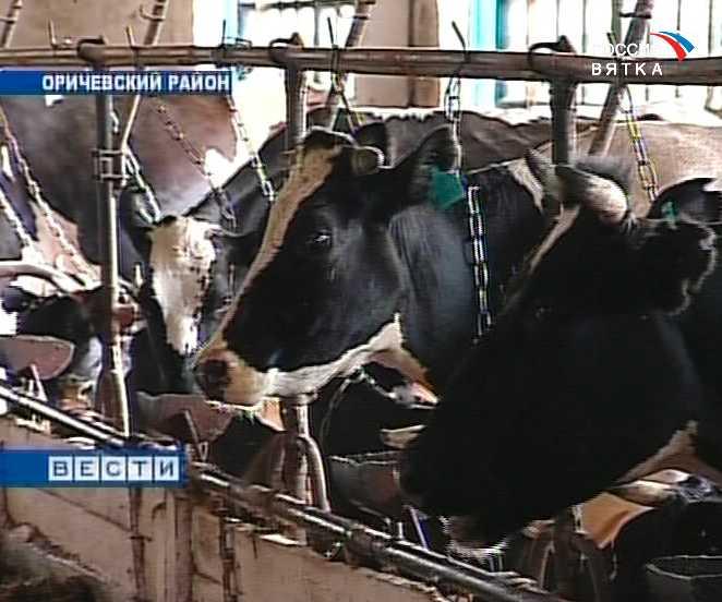 Молоко  - стратегический продукт