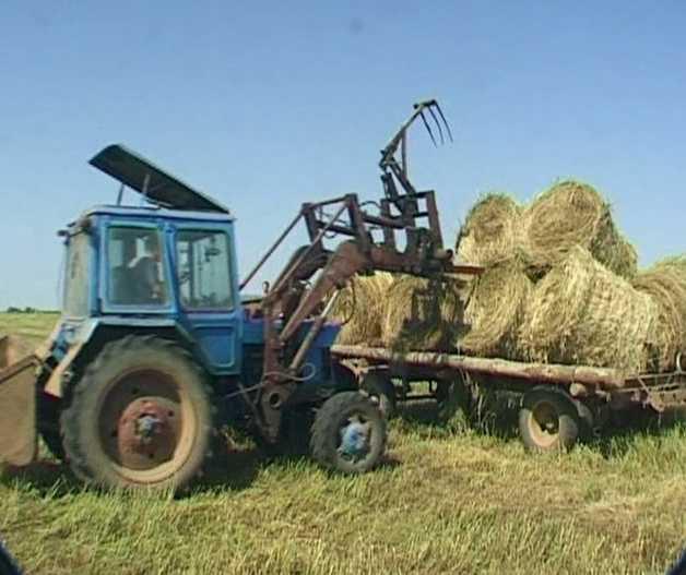 Заготовка кормов в Вятскополянском районе