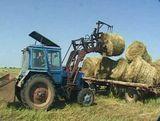 В Кировской  области продолжается уборка кормов