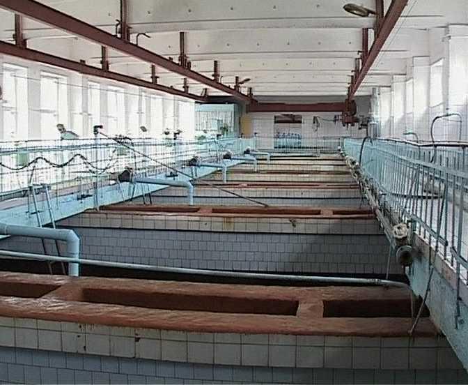 Пуск очистных сооружений в Корчёмкино