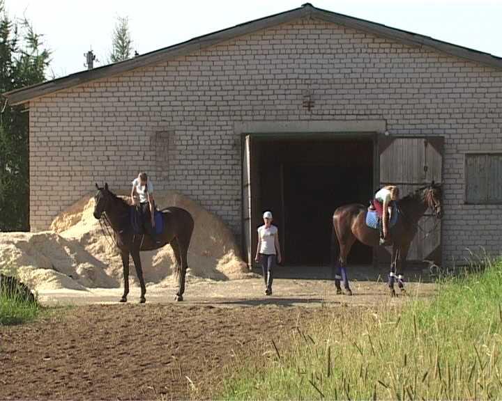 На базе кировского ипподрома будет создан спортивно-оздоровительный центр