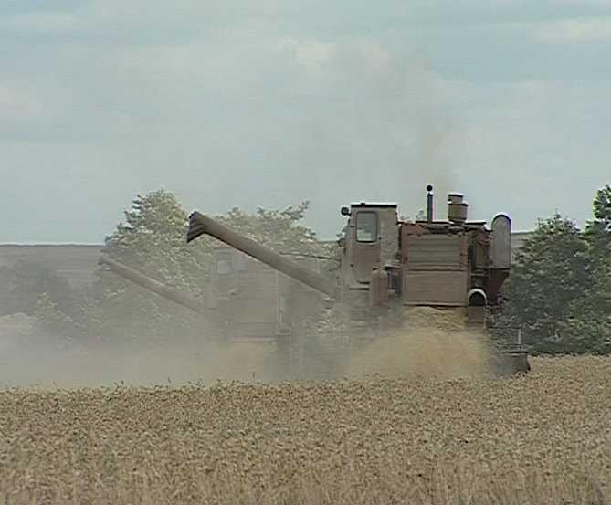 Итоги уборки урожая 2008 года
