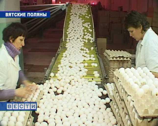 Новые технологии на Вятскополянской птицефабрике
