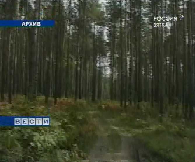 Поддержка лесной отрасли