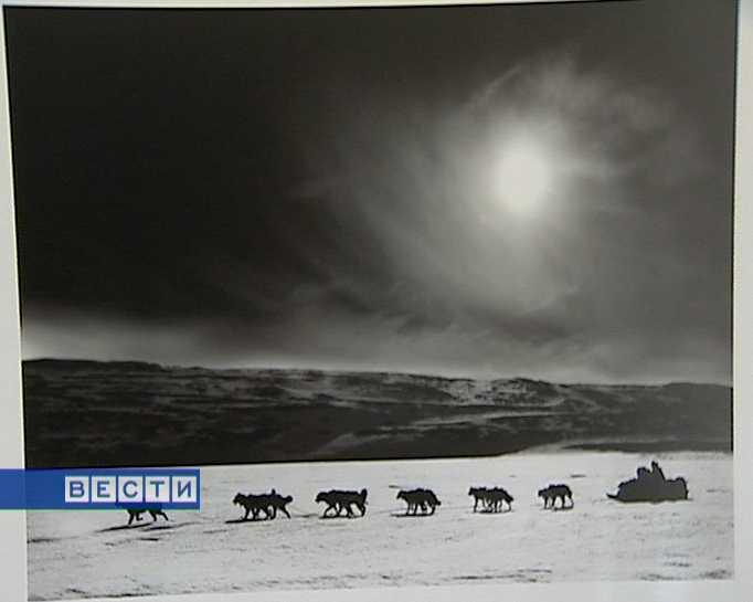 «Мир Арктики»
