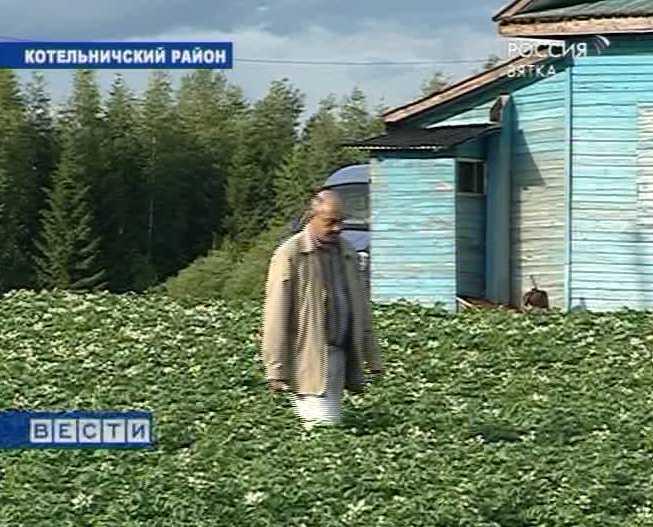 Вятский крестьянин
