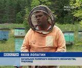 Профессия- пчеловод