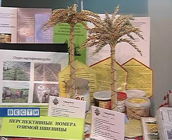 Сельскохозяйственная конференция