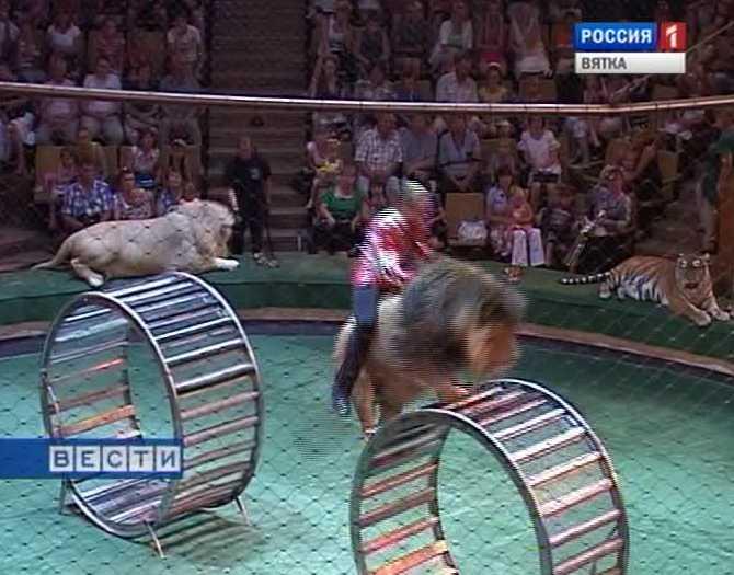 Настоящий цирк