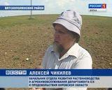 Засуха в Вятскополянском районе