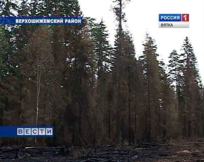 Пожары в Верхошижемском районе