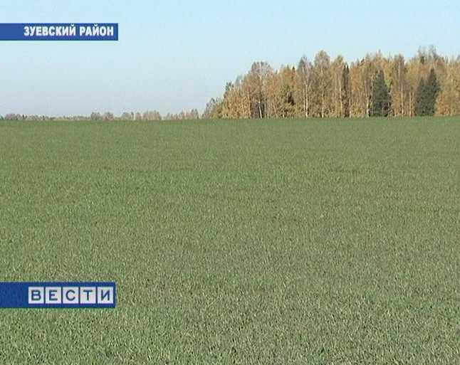 Борьба с болезнями зерновых культур