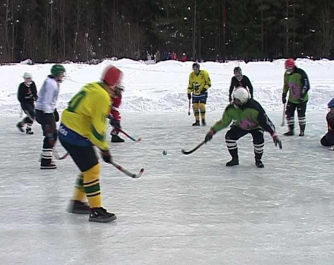 Необычный хоккей