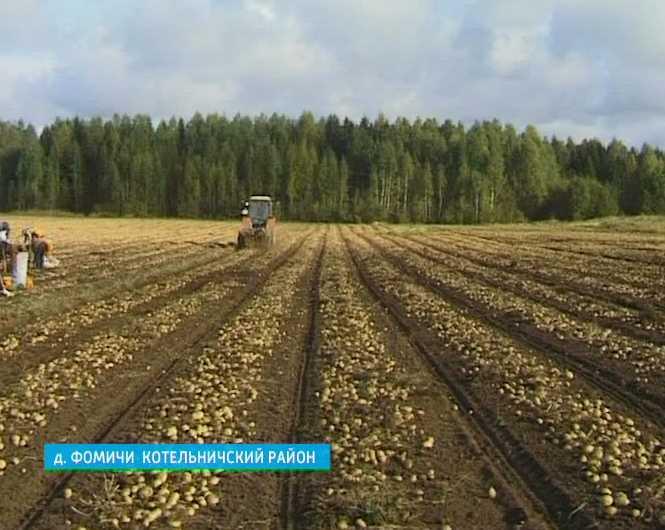 Школа картофелеводов