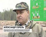 Национальный день посадки леса