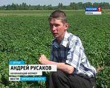 Начинающие фермеры из Орлова