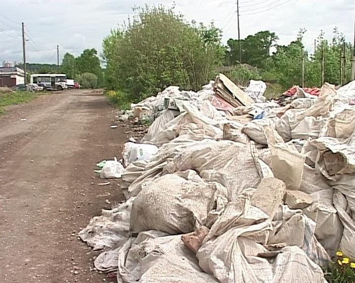 Свалки мусора в поселке Новый