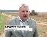 Посадка овощей в ЗАО «Красногорский»