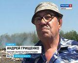 Вести-Экология. Свалки в Советске