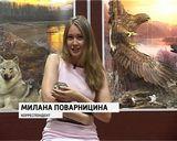 Зоологический музей. Новые диорамы