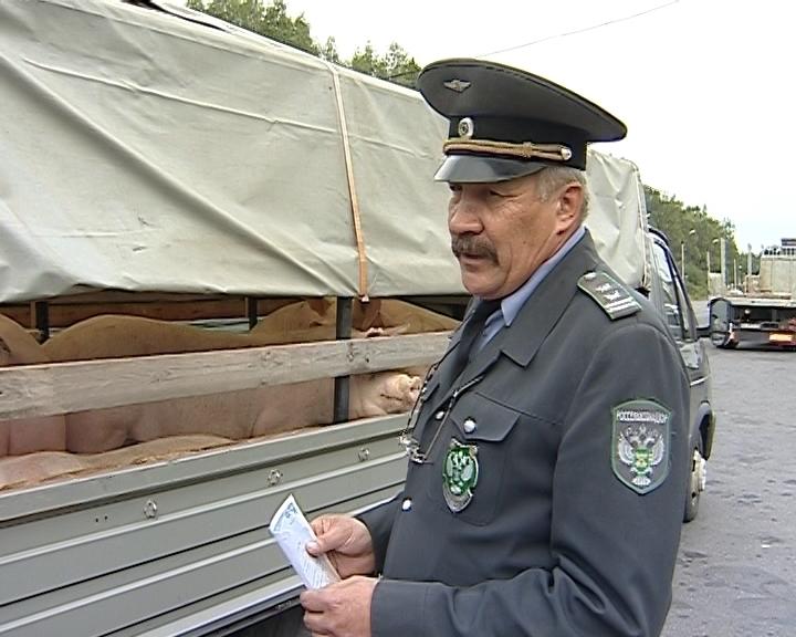 Ветеринарная полиция