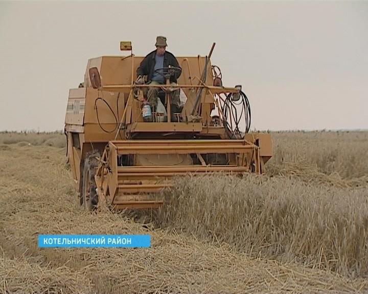 Засуха - не оправдание бездействию