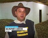 Хозяйство Савковых