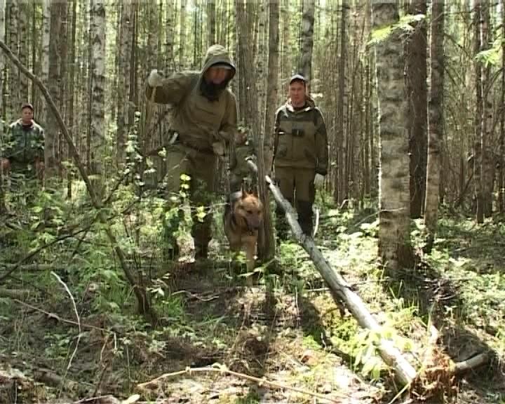 В поселке Речном Опаринского района продолжаются поиски братьев Кулаковых