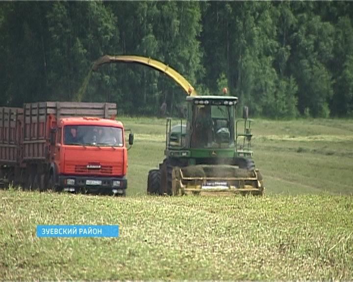 Заготовка кормов в Мухино