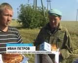 Уборка урожая в Вятскополянском районе