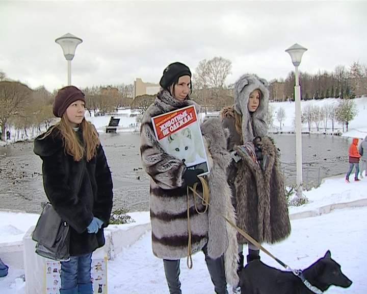 В Кирове прошла акция «Животные не одежда»