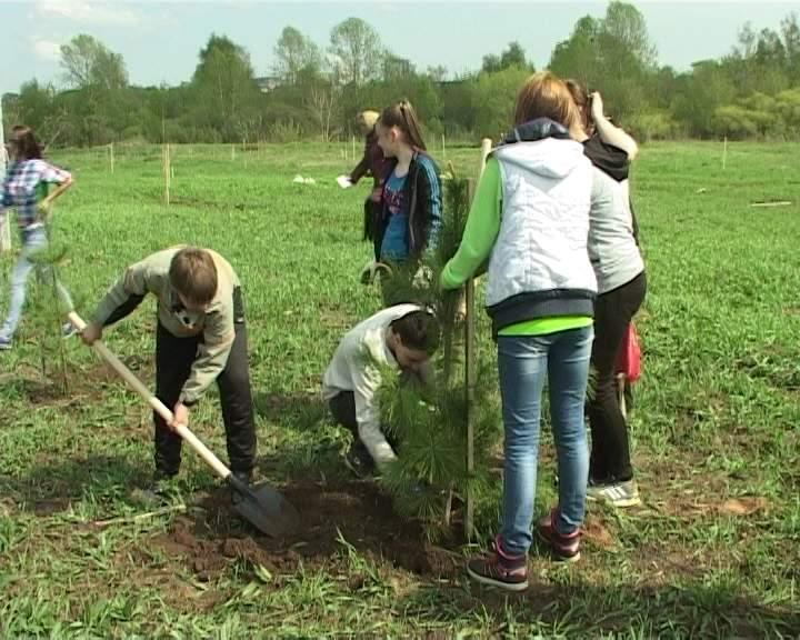 Киров вошел в двадцатку самых экологически чистых городов России