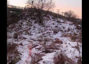 В деле о зверском убийстве женщины в Нолинском районе появился подозреваемый.