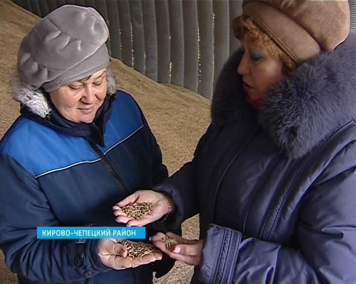 Специалисты Россельхознадзора контролируют соблюдение техрегламента «О безопасности зерна»