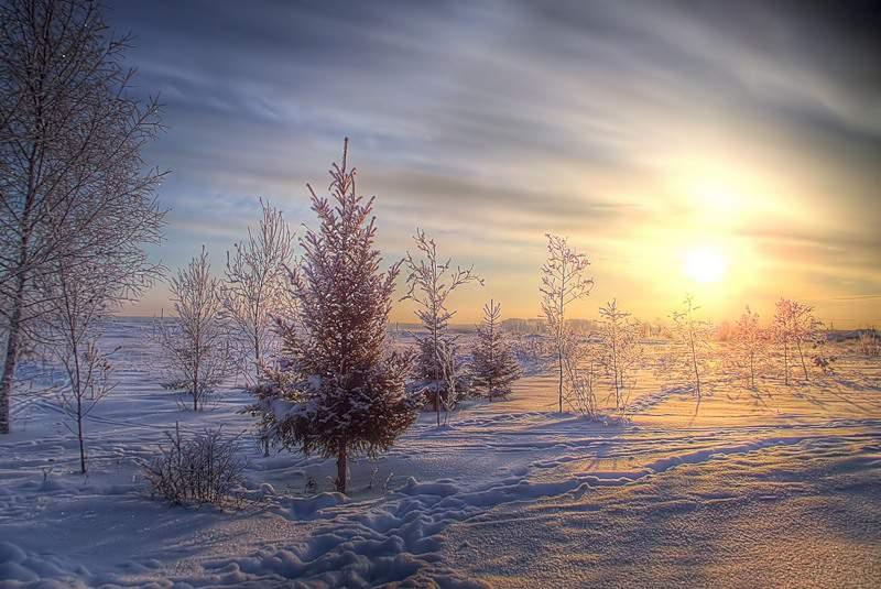В новогодние праздники кировчан ожидает настоящий зимний мороз.