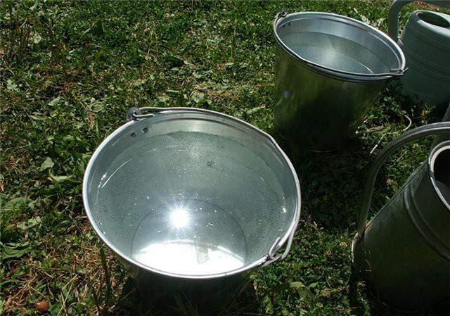 Жители д. Петруненки Фаленского района три года живут без нормального водоснабжения.