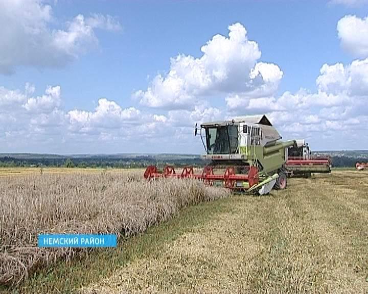 Уборка зерновых в нашем регионе