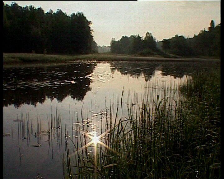 Природа кировской области фото