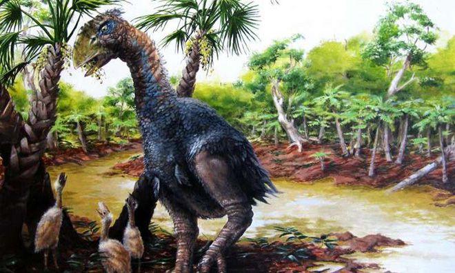 50 миллионов лет назад в Арктике жили гигантские птицы.