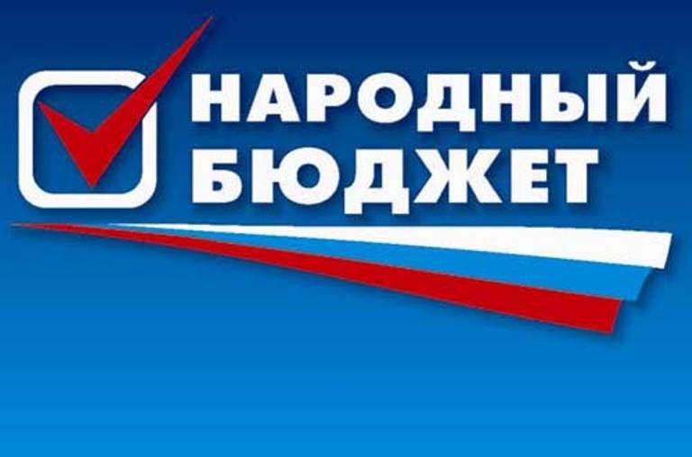 В Кировской области стартовал проект «Народный бюджет».