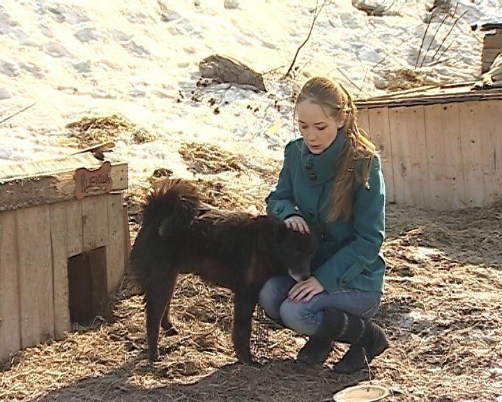 Гордума передала зоозащитникам здание для приюта