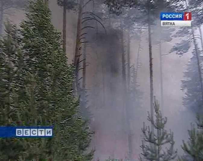 В Кировской области зафиксирован первый лесной пожар
